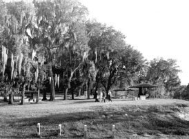 Photo---Branford---Ivey-Park---1960