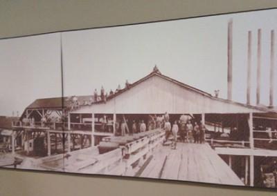 Photo---Dowling-Park---Sawmill---Circa-1900