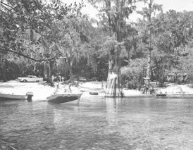 Photo---Little-River-Springs---1950s