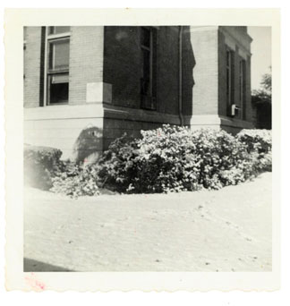 Photo---Live-Oak---Courthouse---Snow---1958