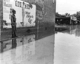 Photo---Live-Oak---Hurricane-Dora---1964---1