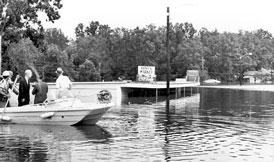 Photo---Live-Oak---Hurricane-Dora---1964---2