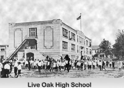 Photo---Live-Oak---Suwannee-High-School---2