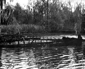 Photo---Steamboat---Wreck-on-Suwannee-River-(David-L.-Yulee)-at-Yulee's-Bend---1954---1