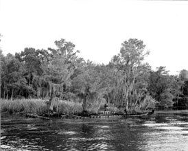 Photo---Steamboat---Wreck-on-Suwannee-River-(David-L.-Yulee)-at-Yulee's-Bend---1958---2