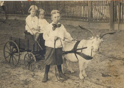 Photo---Suwannee-County-Children-in-Buggy---1915