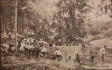 Photo---Suwannee-Springs---Circa-1920