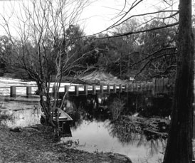Photo---Suwannee-Springs---Dam---1962---1
