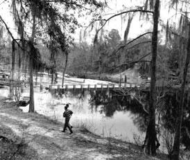 Photo---Suwannee-Springs---Dam---1962---2