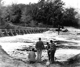 Photo---Suwannee-Springs---Dam---1962---3